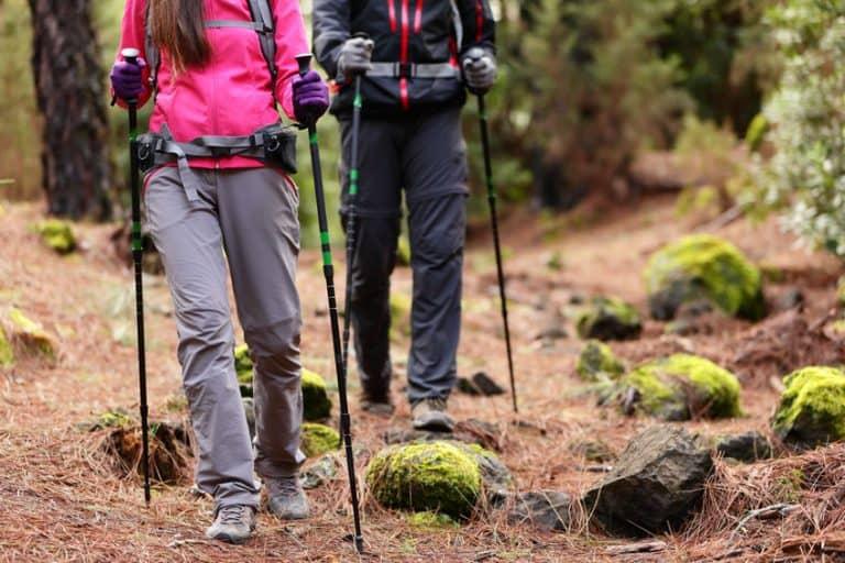 Imagem de casal fazendo trekking.
